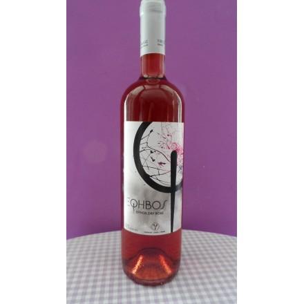 Gavalas Efivos Rosé 750 ml (Kotsifali-Cabernet-Syrah)
